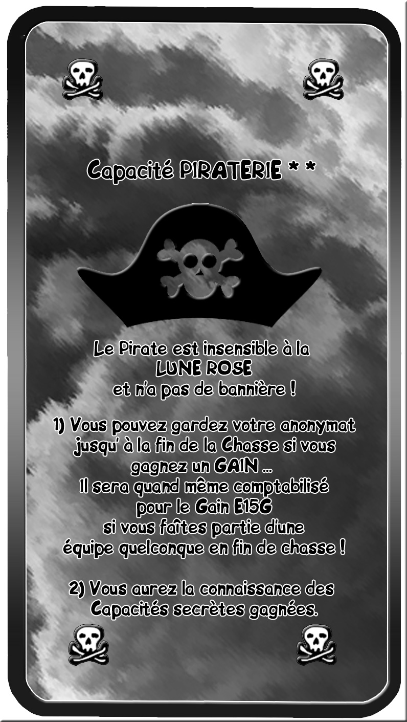 CAPACITE PIRATERIE.jpg